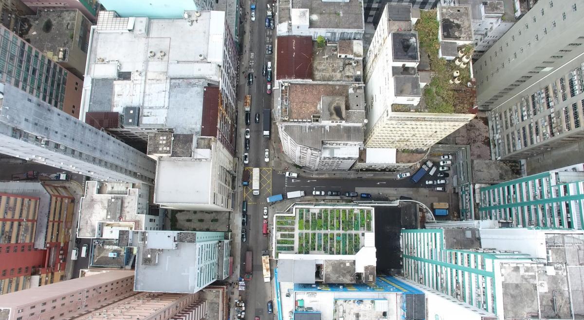 HK Rooftop farming